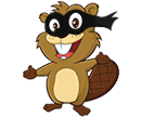 Ninja Beaver Addons
